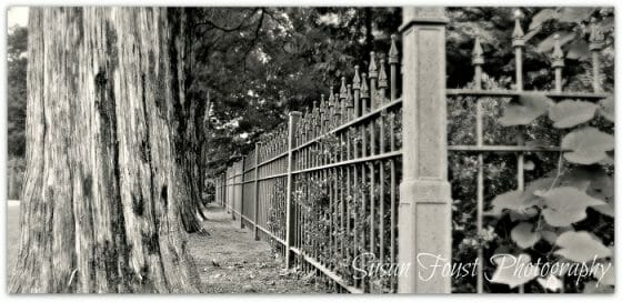 The Old Iron Fence at College Hill Presbyterian Church