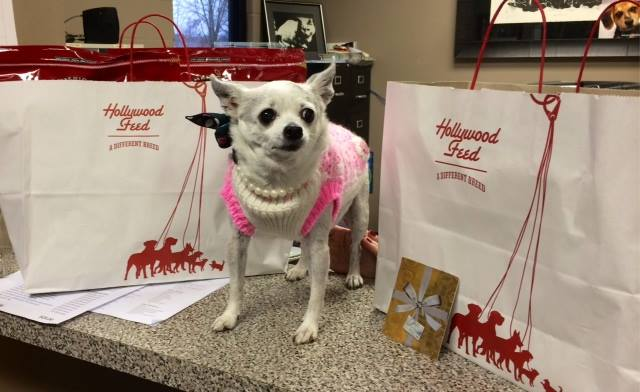 Bebe celebrated her birthday with gifts to OLHS.
