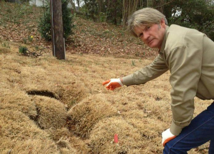 Mike Merchant points out a mole hole. (photo courtesy of Merchant)