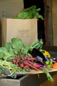 Local Produce Club/CSA bag of fresh goodies