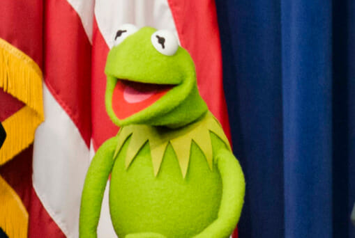 Pic of Kermit the Frog